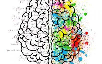 Neuromarketing – so irrational kann Marketing sein