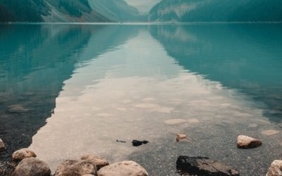 """Resilienz: Was ist die """"mentale Stärke""""?"""